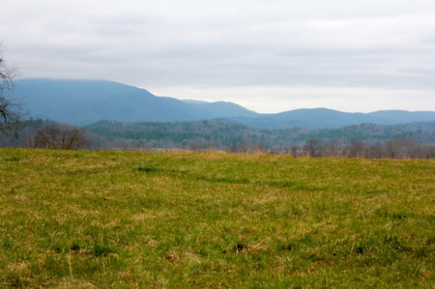 I will end with a beautiful sight on the drive through Cades Cove!