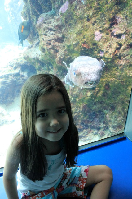 Mia at the aquarium.