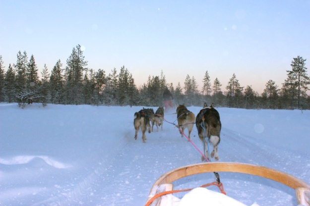 The sun setting on our ride in Lapland.