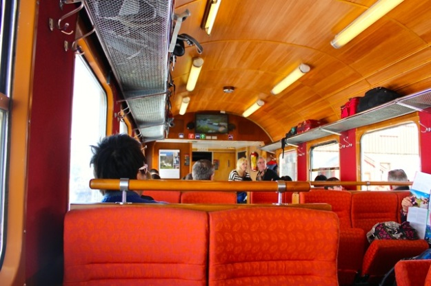 A shot of inside the train before we left the Myrdal stop.