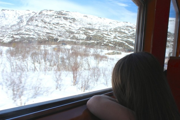 Mia was enjoying the view from the amazing Flåm Railway!