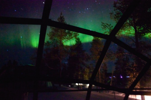 A stunning sight of the northern lights I woke up to in the middle of the night from our glass igloo!
