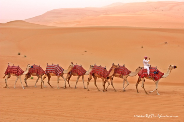 """Connected Camels and Peace"" at the Rub' al Khali (The Empty Quarter) desert in Abu Dhabi, UAE."