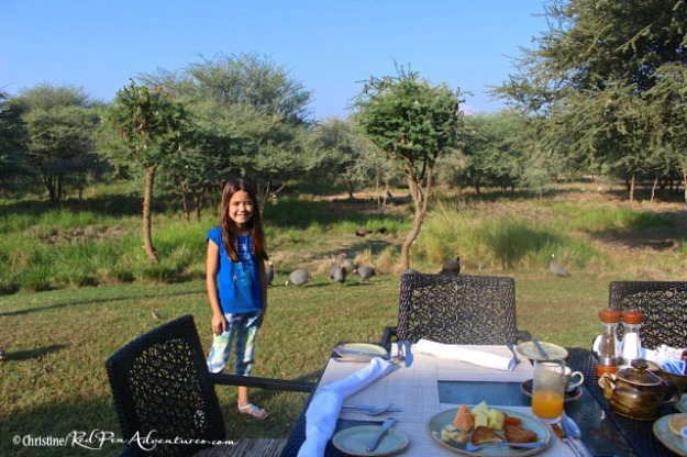 Mia really enjoyed the breakfast every morning with the animals at the Al Sahel Resort.