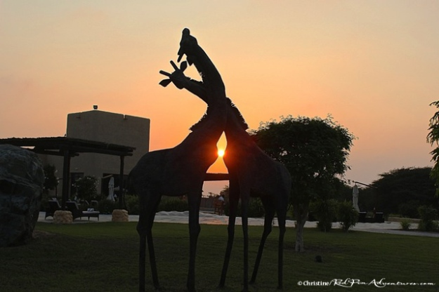 Sunset at the giraffe sculptures which greet you at the reception entrance to the Al Sahel Resort.