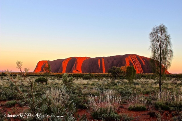 The stunning showing of light and shadows as the sun rose this morning at Uluru.
